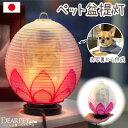 ペット盆提灯 写真入り ペット供養 ちょうちん 蓮の花ペット 自宅 電気 ライト ランタン 犬 猫 かわいい 小さい コー…