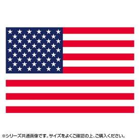 【代引き・同梱不可】N国旗 アメリカ L版 W750×H500mm 22818
