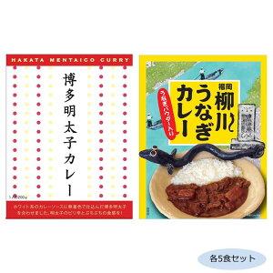 【代引き・同梱不可】ご当地カレー 福岡博多明太子カレー&柳川うなぎカレー(うなぎパウダー入り) 各5食セット