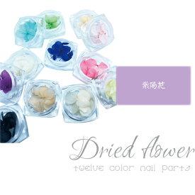 ドライフラワー 12色セット 紫陽花 花びら 押し花 ネイル レジン セット 素材 おしばな あじさい