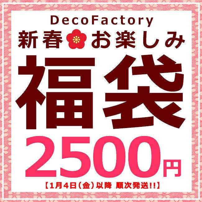 【ネコポス送料無料】新春お楽しみ福袋 2,500円