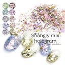 ネイルアート シャングリーmixホログラム 全10色 約1.5g入り おうち時間 フットネイル