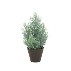 【光触媒】30cmクレストツリー(プラスチック)(フロストグリーン)【ゴールドクレストのフェイク(人工樹木)】