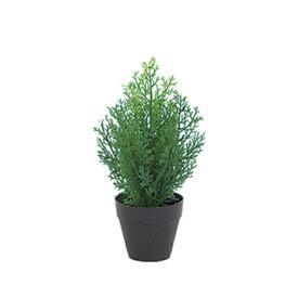 【光触媒】30cmクレストツリー(プラスチック)(グリーン)【ゴールドクレストのフェイク(人工樹木)】