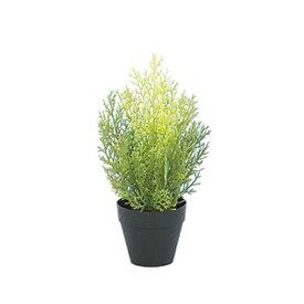 【光触媒】30cmクレストツリー(プラスチック)(ライトグリーン)【ゴールドクレストのフェイク(人工樹木)】