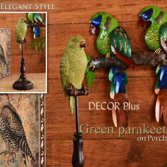 绿鹦鹉在科帕奇鸟站在雕像古董古董可爱时尚动物动物绿绿鸟