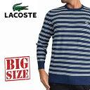 ラコステ LACOSTE ニット セーター コットン ボーダー クルーネック XL XXL XXXL大きいサイズ メンズ あす楽