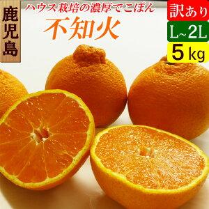 【送料無料】 鹿児島産 デコポン 不知火(しらぬい) 訳あり 5キロ(Lサイズ) ハウス栽培 濃厚