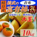 【送料無料】 岐阜産 富有柿 青秀 約10kg 3L(30玉入)本場の完熟甘柿!