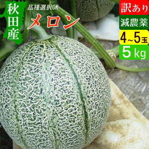 秋田産 減農薬メロン 訳あり 5kg(4〜5玉) アウトレット 【送料無料】