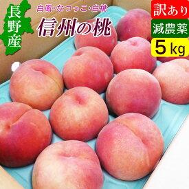 信州 小布施 減農薬 桃 モモ 訳あり 5kg 家庭用 【送料無料】