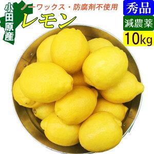 【送料無料】減農薬 国産レモン 10kg 小田原産 特別栽培・有機肥料