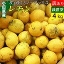 【送料無料】減農薬 国産 レモン 訳あり 4kg 小田原産 ノーワックス 有機肥料 家庭用【黒斑点あり】