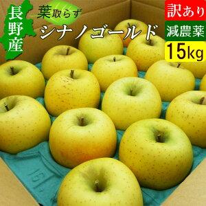 【送料無料】 訳あり 長野産 信州 りんご シナノゴールド 15kg メガ盛りバリューセット!