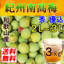 【送料無料】紀州和歌山産 南高梅 3kg 2L〜3L(秀・優込) 青梅【梅干し用・梅酒用】