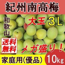 【送料無料】紀州和歌山 南高梅 大玉 10kg 3Lサイズ 優品(家庭用)【完熟梅】