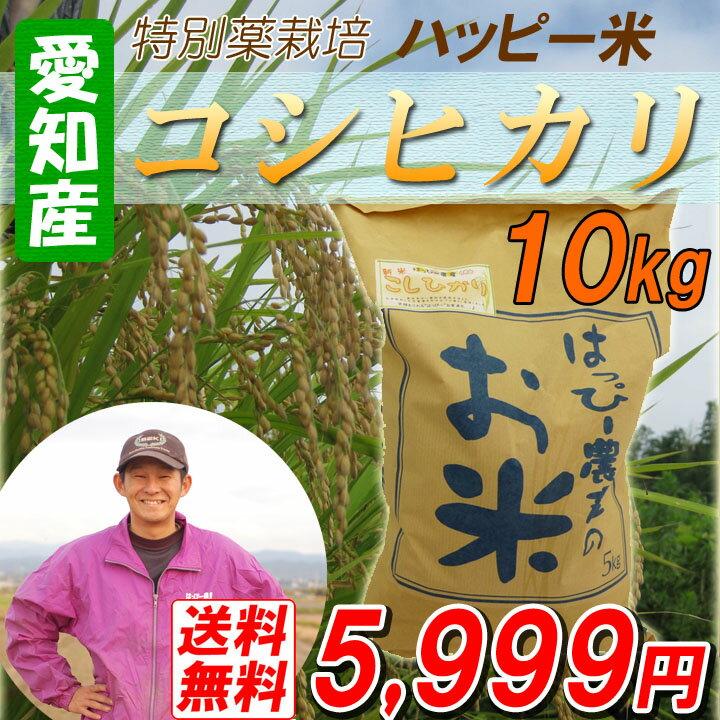 【29年産新米】【白米】 送料無料 愛知産 特別栽培米 コシヒカリ 10kg ハッピー米