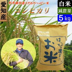 【30年産】【白米】 送料無料 愛知産 特別栽培米 コシヒカリ 5kg ハッピー米 新米
