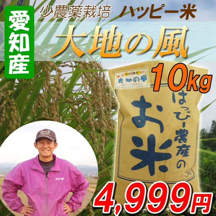 【29年産】【白米】 送料無料 愛知産 大地の風 10kg 低農薬米 ハッピー米