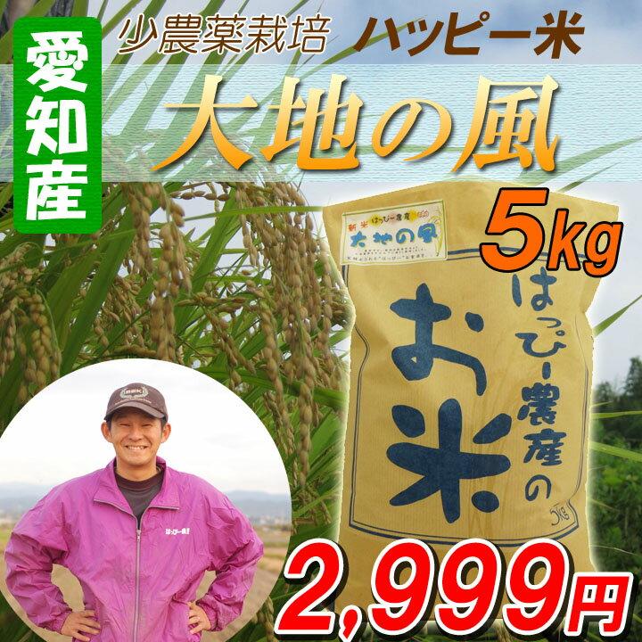 【29年産】【白米】 送料無料 愛知産 大地の風 5kg 低農薬米 ハッピー米