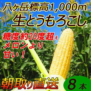 【送料無料】減農薬 八ヶ岳 生とうもろこし 8本入(ギ...