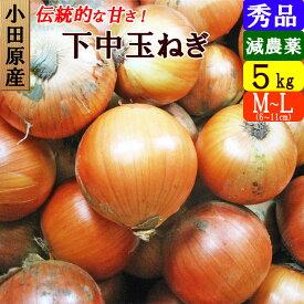 【送料無料】小田原産 下中玉ねぎ 5kg (M・L混合)特別栽培(減農薬)たまねぎ