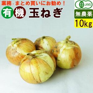 【送料無料】有機玉ねぎ 10キロ 不揃い オーガニック野菜! まとめ買い