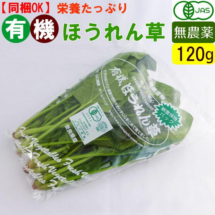 オーガニック 有機 ほうれん草 120g 無農薬 有機野菜