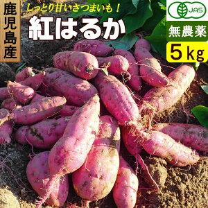 【送料無料】 鹿児島産 有機さつまいも 5kg バラ詰め 無農薬・無化学肥料 紅はるか