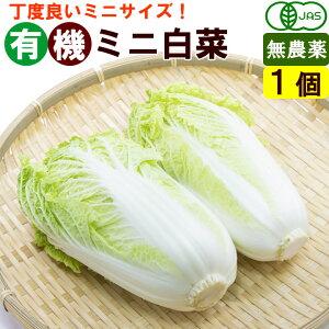 有機ミニ白菜 1個(約600g) オーガニック 鍋野菜