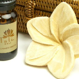 木雞蛋花 1 塊天然木質香氣香薰油基本花香亞洲巴厘島提出了女裝 cb
