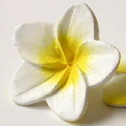 木花雞蛋花白色一木香味芳香油基本飄香的芬芳亞洲巴厘島提出了女裝 cb