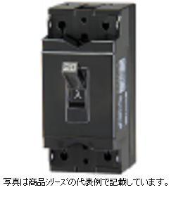 テンパール工業 安全ブレーカ極数:2P 素子数:2E フレーム:30AF定格使用電圧:AC100-100V/200V/DC48V 定格電流:15AB-2EA 15A(産業用)
