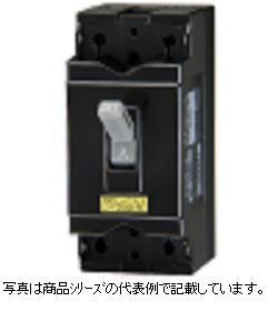 テンパール工業 安全ブレーカ極数:2P 素子数:2E フレーム:50AF定格使用電圧:AC100-100V/200-200V 定格電流:40AB-2HA 40A