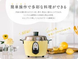 大同電鍋楽天公式販売店ー6合ーMサイズ 外釜ステンレス製(きはだ色)