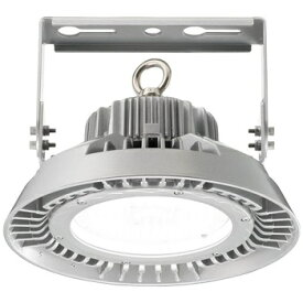 岩崎電気 EHWP10010W/NSAN9 レディオック ハイベイ シータ 100W 水銀ランプ250W・300W 相当メタルハライドランプ 250W 相当 クラス1000 広角
