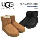 アグ ブーツ メンズ クラシック ミニ ブラック/チェスナット UGG CLASSIC MINI BLACK/CHESTNUT 1002072