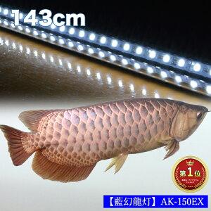 【ポイント5倍19日20時~26日2時】アロワナ ライト 金龍 過背金 150cm水槽用 藍幻龍灯 ワイルドブルー EX LED 2列 水中 照明 水中蛍光灯 アクアリウム 熱帯魚 アジアアロワナ ディスカス でんらい AK