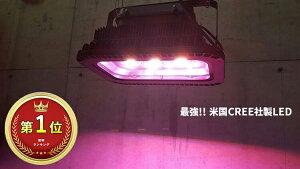 【ポイント5倍19日20時~26日2時】史上最強フルパワー アロワナライト LED 上部ライト 上部照明 紅龍用 金龍用 2種類 水中照明 水中蛍光灯 アクアリウム 熱帯魚 アジアアロワナ アロワナ水中LED