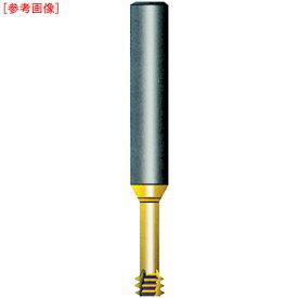 ノガ・ジャパン NOGA Carmex超硬ソリッドミニミルスレッド シャンク径6×M2.0×0.40×首下4.5 M06016C40.4ISO