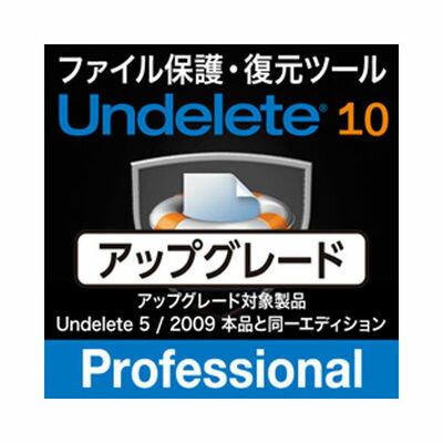相栄電器 Undelete 10J Professional アップグレード SE501ET