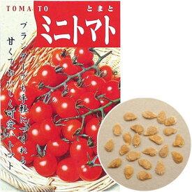 アーテック 野菜の種 ミニトマト 苗床付 ATC-2733