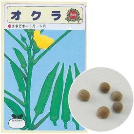 アーテック 野菜の種 オクラ 苗床付 ATC-2739