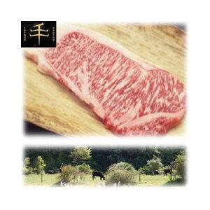 その他 千屋牛「A5ランク」ステーキ(ロース)肉 300g(300g×1) TSR-300【納期目安:1週間】