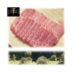 その他 千屋牛「A5ランク」焼き肉用(ロース)肉 300g TYR-300【納期目安:1週間】