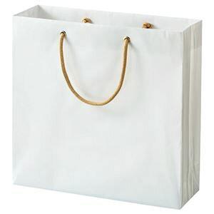 その他 (まとめ) TANOSEE ビニールカバー付手提げ袋 S ヨコ330×タテ320×マチ幅110mm 白無地 1パック(10枚) 【×3セット】 ds-1575036