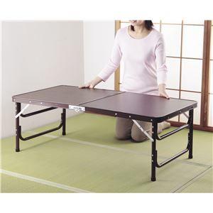 その他 木目調軽量折りたたみテーブル 120cm幅【代引不可】 ds-1675260
