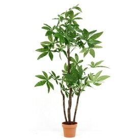その他 観葉植物/フェイクグリーン 【パキラ スタンダード】 7号鉢対応 幅90cm 〔リビング ガーデニング〕 ds-1951573