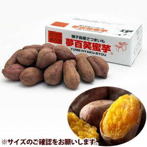 大和通商 夢百笑 蜜芋 S 5kg MITSUIMO-S-5【納期目安:1週間】