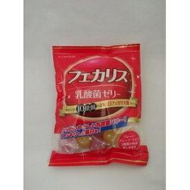 その他 (まとめ)フェカリス乳酸菌ゼリー 【×8袋セット】 ds-2213481